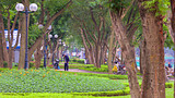 Tay Ho (West Lake) - Hanoi - Tourism Media