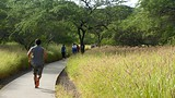 Diamond Head - Oahu Island - Tourism Media