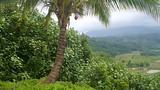 Hanalei Valley Lookout - Princeville - Tourism Media