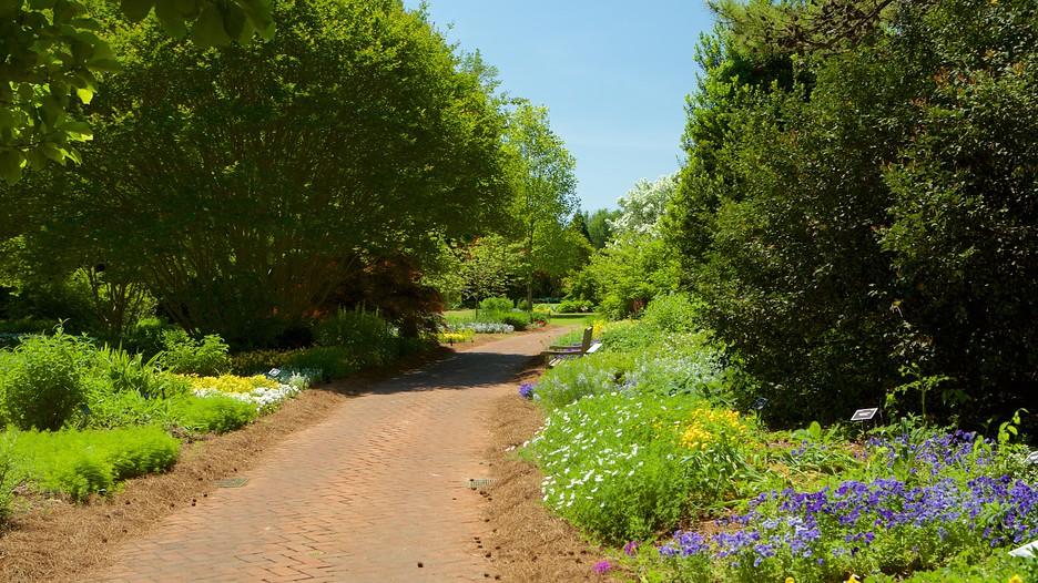 Huntsville Botanical Garden Huntsville Alabama Attraction