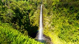 Showing item 14 of 65. Akaka Falls - Hawaii Island - Tourism Media