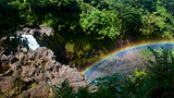 Showing item 47 of 65. Rainbow Falls - Hawaii Island - Tourism Media