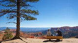 Rim Trail - Bryce Canyon National Park - Tourism Media