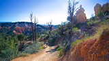 Fairyland Trail - Bryce Canyon National Park - Tourism Media