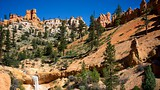 Bryce Canyon National Park - Tourism Media