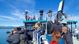 Funter Bay State Marine Park - Alaska - Tourism Media