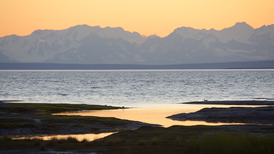 Anchorage alaska vacation packages save on anchorage for Anchorage fishing charters