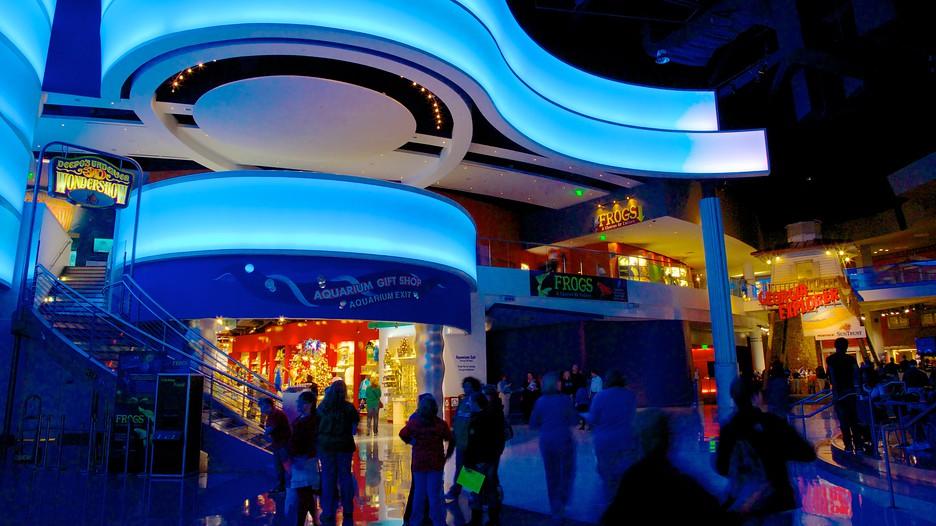 Georgia Aquarium In Atlanta Georgia Expedia