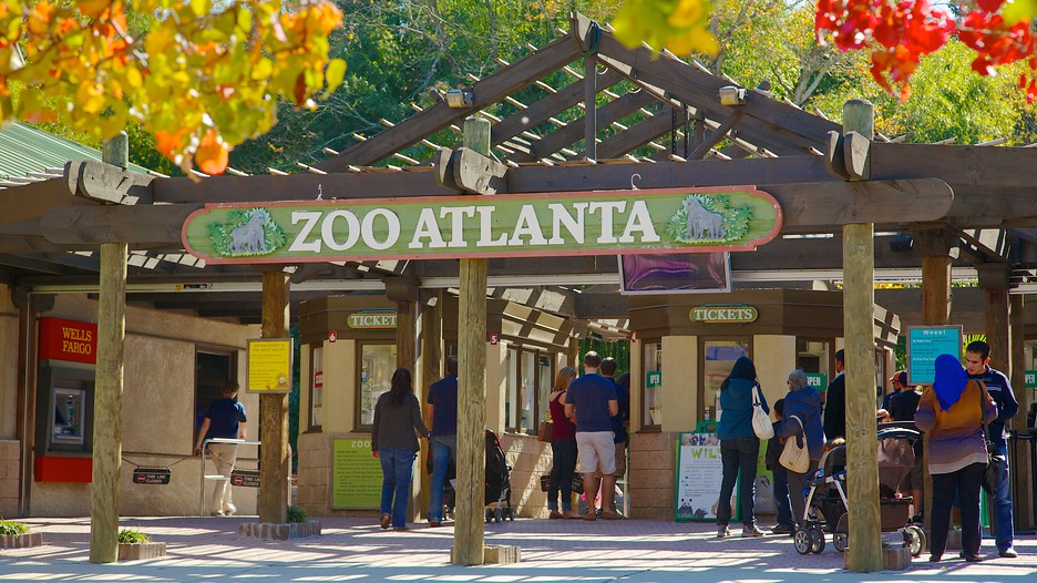 [Image: Zoo-Atlanta-26688.jpg]