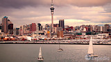 Video: Auckland (and vicinity)