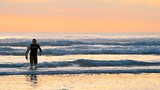 Piha Beach - New Zealand - Tourism Media