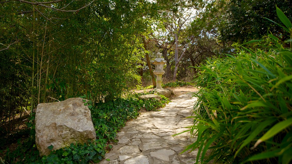 Zilker Botanical Garden in Austin Texas Expediaca
