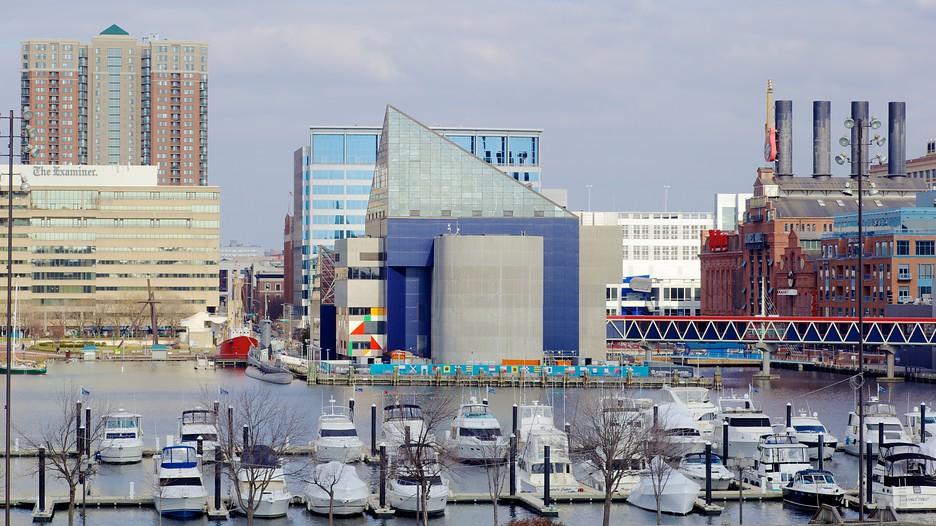 Baltimore Inner Harbor Marina in Baltimore, Maryland   Expedia