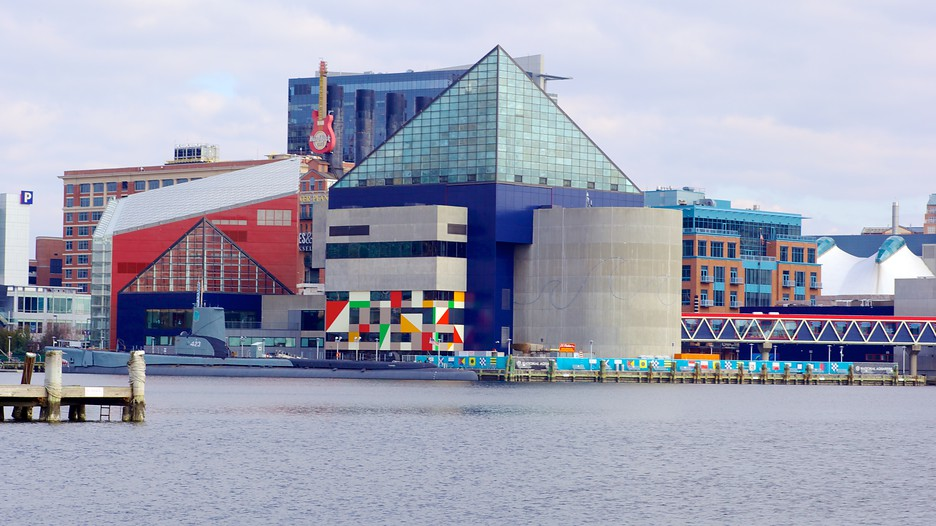 Related Keywords Suggestions For National Aquarium Maryland