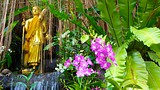 Wat Saket - Thailand - Tourism Media