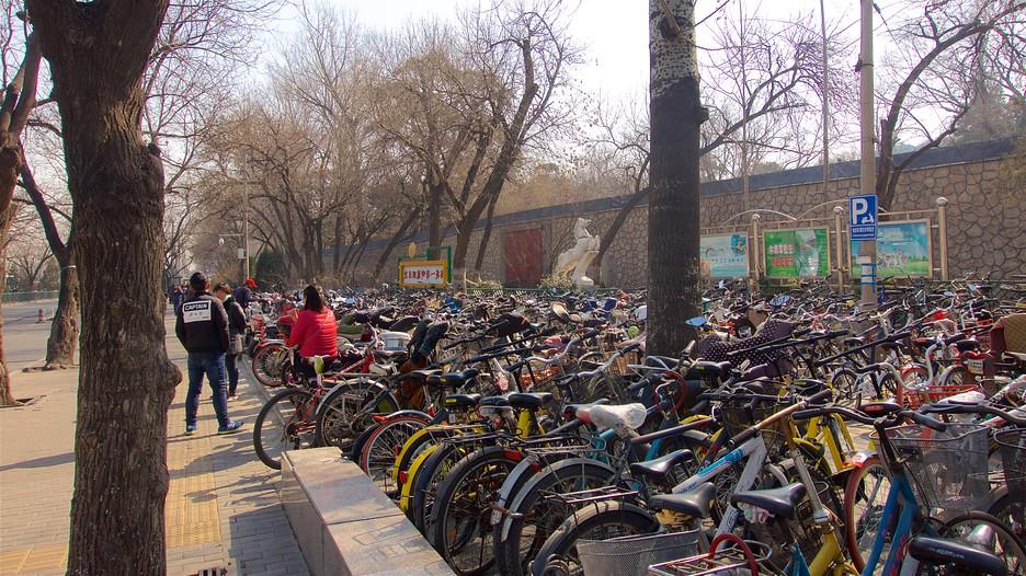 beijing travel guide visit beijing china. Black Bedroom Furniture Sets. Home Design Ideas
