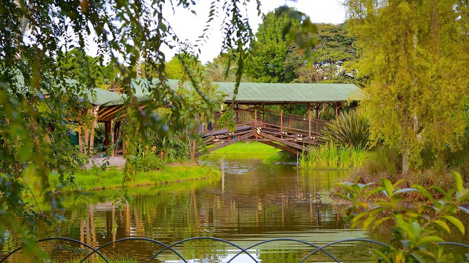 Bogota botanical garden in bogota expedia for Botanic com jardin