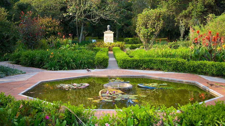 Investigación del Jardin Botanico : Menciona las funciones y la ...