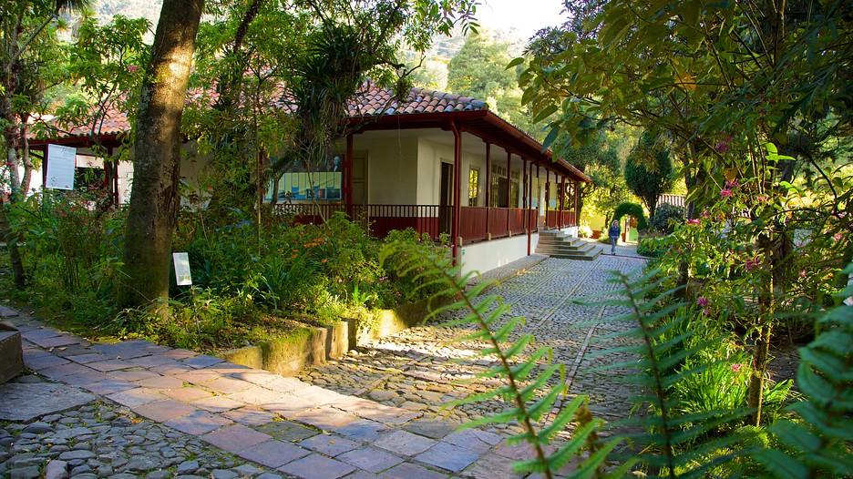Casa museo quinta de bolivar in bogota for Casa quinta muebles bogota