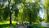 Boston Common - América del Norte - Tourism Media