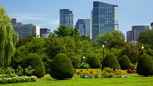 Boston Common - Boston