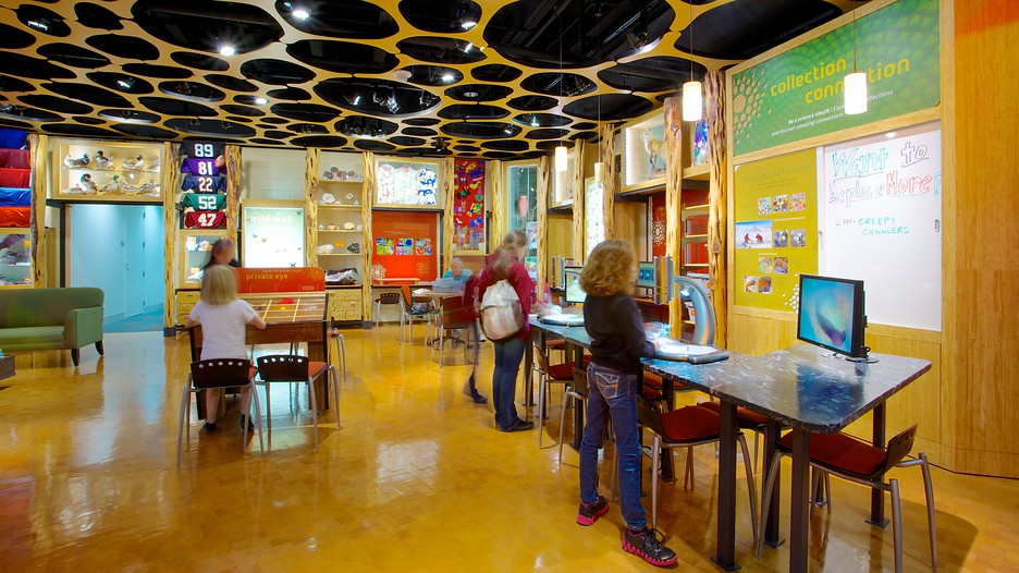 Discovery Place In Charlotte North Carolina Expedia
