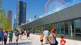 Showing item 44 of 90. Navy Pier - Chicago - Tourism Media