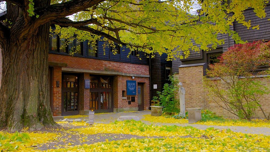 Frank lloyd wright home and studio in chicago illinois for Frank lloyd wright houses in california