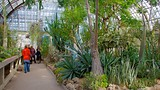 Garfield Park Conservatory - Illinois - Tourism Media