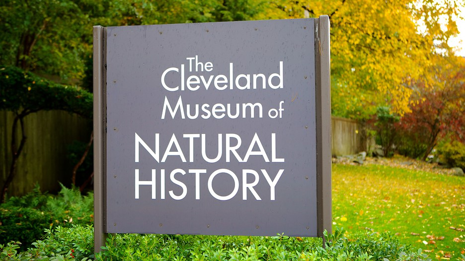 the history of cleveland ohio The cleveland police museum • 1300 ontario street • cleveland, ohio 44113 • 2166235055 our museum covers the entire history of the cleveland police department.