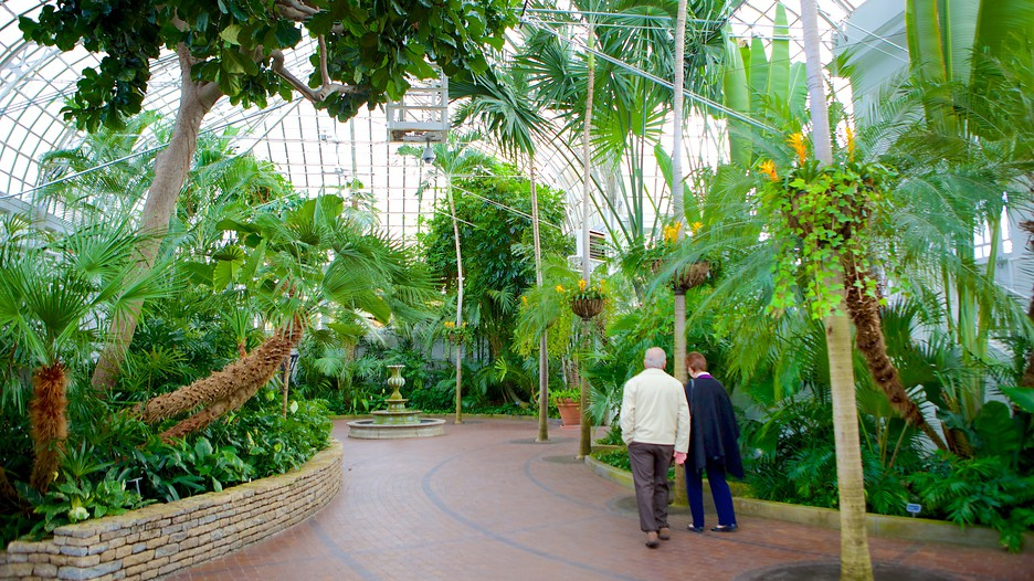Franklin park conservatory and botanical gardens in - Strader s garden centers columbus oh ...