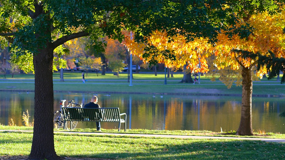 Vacation Facebook Covers City Park in Denver, C...