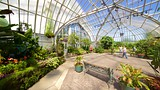Anna Scripps Whitcomb Conservatory - Detroit - Tourism Media