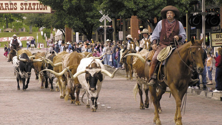 Hotels Close To Fort Worth Stockyards