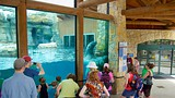 Kansas City Zoo - Missouri - Tourism Media