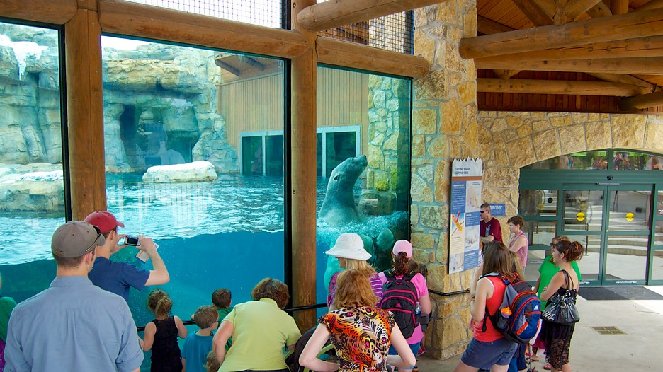 Kansas City Zoo in Kansas City Missouri – Kansas City Tourist Attractions Map