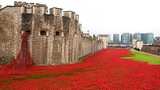 Tower of London - Londen - Tourism Media