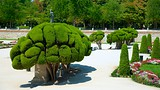 El Retiro Park - Madrid - Tourism Media
