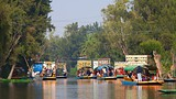Xochimilco - Mexico City - Tourism Media