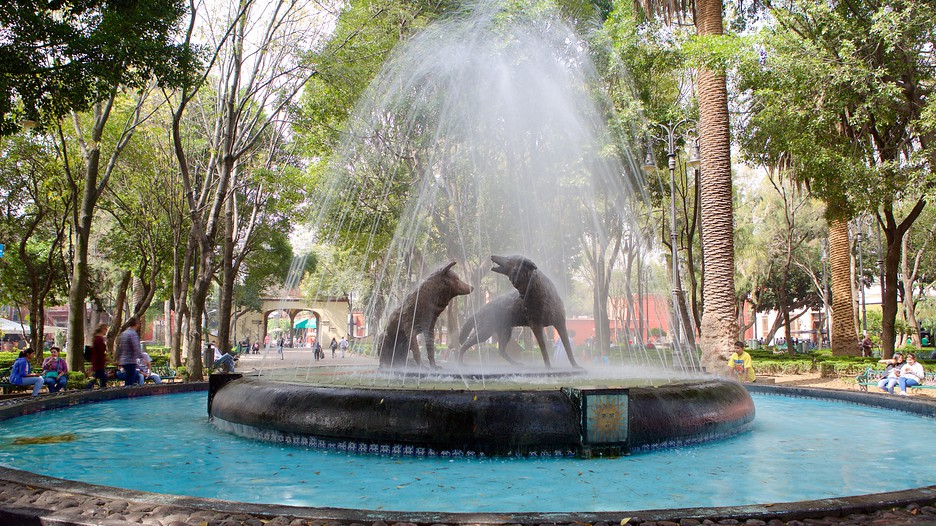 Coyoacan holidays cheap coyoacan holiday packages deals for Vacation in mexico city