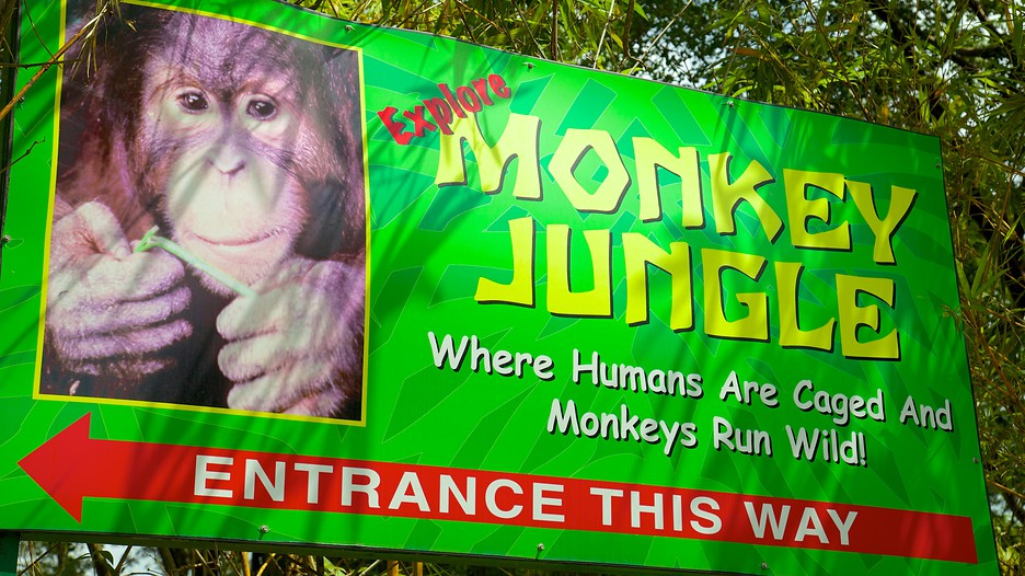 Monkey Jungle Sign