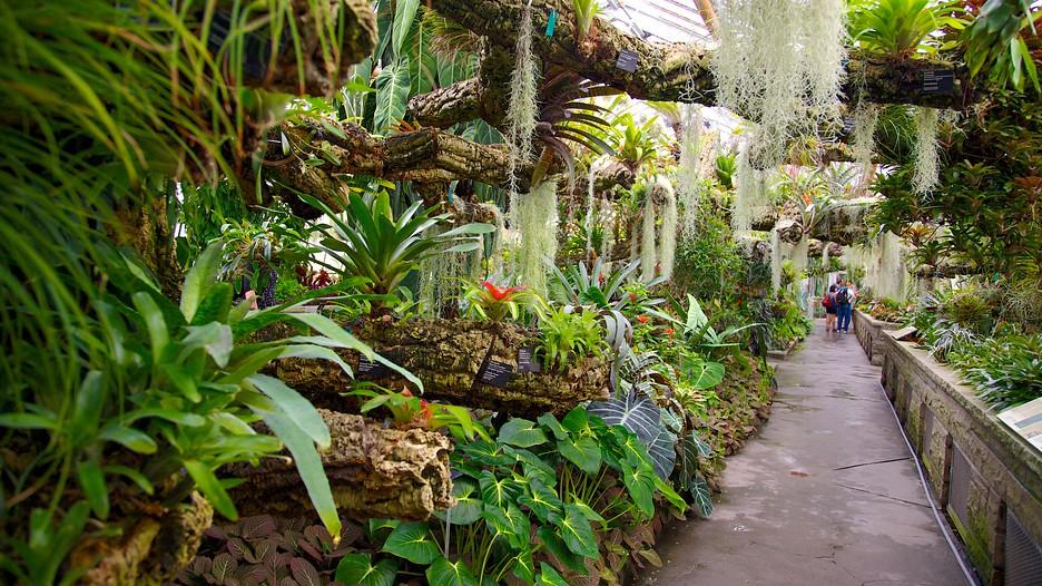 montreal botanical garden in montreal quebec. Black Bedroom Furniture Sets. Home Design Ideas