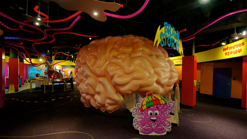 Adventure Science Center In Nashville Tennessee Expedia