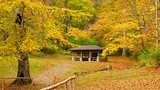Edwin and Percy Warner Parks - Nashville - Tourism Media