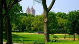 Central Park - New York - Tourism Media