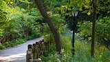 Central Park - New York (et environs) - Tourism Media