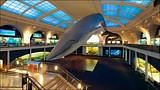 American Museum of Natural History - New York (und Umgebung) - Tourism Media