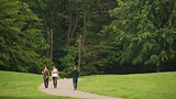 Showing item 39 of 91. Prospect Park - New York - Tourism Media