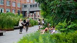 The High Line Park - New York - Tourism Media