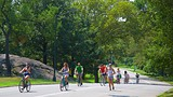 Central Park - New York (en omgeving) - Tourism Media